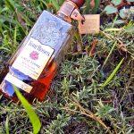 Four Roses OBSQ K&L Single Barrel Review